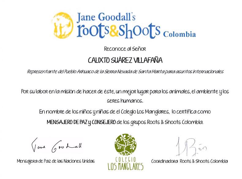 calixto-certificado03
